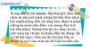 Bài 18.4 trang 39 SBT Vật lí 7