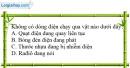 Bài 19.7 trang 42 SBT Vật lí 7