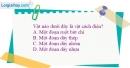 Bài 20.5 trang 45 SBT Vật lí 7