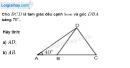 Bài 61 trang 115 SBT toán 9 tập 1