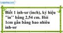 Bài 97 trang 25 SBT toán 7 tập 1