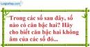 Bài 108 trang 28 SBT toán 7 tập 1