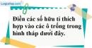Bài 12 trang 9 SBT toán 7 tập 1