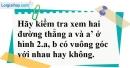 Bài 10 trang 102 SBT toán 7 tập 1