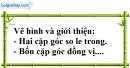 Bài 16 trang 103 SBT toán 7 tập 1