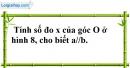 Bài 31 trang 110 SBT toán 7 tập 1