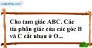 Bài 53 trang 144 SBT toán 7 tập 1