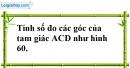 Bài 74 trang 147 SBT toán 7 tập 1