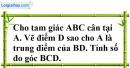 Bài 75 trang 147 SBT toán 7 tập 1