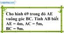 Bài 105 trang 153 SBT toán 7 tập 1