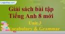 Vocabulary & Grammar –  trang 17 - Unit 3 SBT Tiếng Anh 8 mới