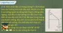 Bài 17.4, 17.5, 17.6 trang 42 SBT Vật lí 10