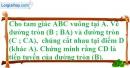 Bài 44 trang 163 SBT toán 9 tập 1