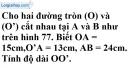 Bài 65 trang 167 SBT toán 9 tập 1