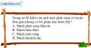 Bài 23.5, 23.6, 23.7 trang 60 SBT Vật Lí 12
