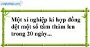 Bài 31 trang 29 Vở bài tập toán 8 tập 2
