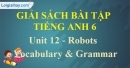 Vocabulary and Grammar - Unit 12 SBT tiếng Anh lớp 6 mới