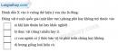 Giải câu 4 trang 85 SBT địa 6