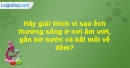 Câu hỏi 3 trang 80 Vở bài tập Sinh học 7
