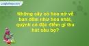 Câu hỏi 4 trang 60 Vở bài tập Sinh học 6
