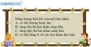 Bài 36.3, 36.4, 36.5 trang 108 SBT Vật Lí 12