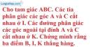 Bài 52 trang 46 SBT toán 7 tập 2