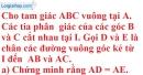 Bài 53* trang 46 SBT toán 7 tập 2