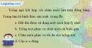Bài 6 trang 83 vở bài tập Địa lí 7