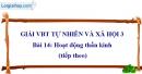 Bài 14: Hoạt động thần kinh (tiếp theo) (VBT)