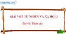 Bài 41: Thân cây (VBT)