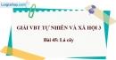 Bài 45: Lá cây (VBT)