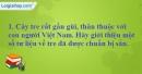 A. Hoạt động cơ bản - Bài 4B: Con người Việt Nam