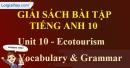 Vocabulary & Grammar - Unit 10 SBT Tiếng anh 10 mới