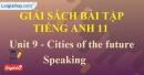 Speaking - trang 31 Unit 9 SBT Tiếng Anh 11 mới