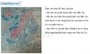 Bài 1 trang 49 Tập bản đồ Địa lí 7