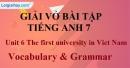 Vocabulary & Grammar -  Unit 6 VBT Tiếng Anh 7 mới