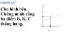 Bài 65 trang 49 SBT toán 7 tập 2
