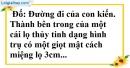 Bài 4 trang 163 SBT toán 9 tập 2