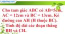 Bài 3 trang 195 SBT toán 9 tập 2