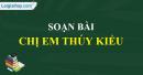 Soạn bài Chị em Thuý Kiều (Trích Truyện Kiều)