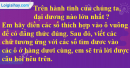 Bài 21 trang 8 SBT toán 6 tập 2