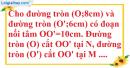 Bài 8 trang 196 SBT toán 9 tập 2