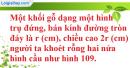 Bài 38 trang 173 SBT toán 9 tập 2
