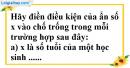 Phần câu hỏi bài 6, 7 trang 25 Vở bài tập toán 8 tập 2