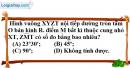 Bài III.11 phần bài tập bổ sung trang 116 SBT toán 9 tập 2