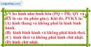 Bài III.12 phần bài tập bổ sung trang 116 SBT toán 9 tập 2