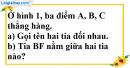 Bài 5 trang 80 SBT toán 6 tập 2