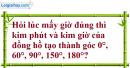 Bài 13 trang 85 SBT toán 6 tập 2