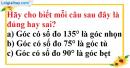 Bài 3.1, 3.2, 3.3 phần bài tập bổ sung trang 85, 86 SBT toán 6 tập 2
