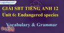 Vocabulary & Grammar - trang 6 Unit 6 SBT Tiếng anh 12 mới